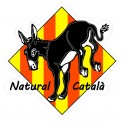 Burro natural catala ane autocollant adhésif sticker catalan logo n°1 losange