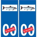 Autocollant plaque immatriculation image de saumon