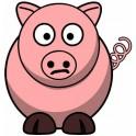 Sticker pig sticker adhesive