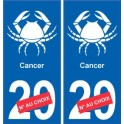 Cancer astrologie autocollant plaque auto logo 2