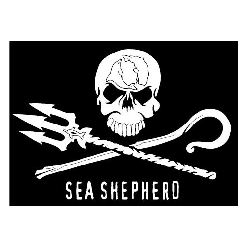 autocollant t te de mort skull sea shepherd flag. Black Bedroom Furniture Sets. Home Design Ideas