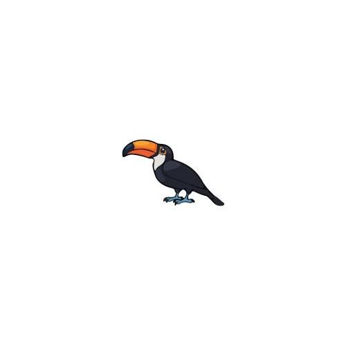 Autocollant Toucan oiseau sticker 4