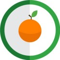 autocollant fruit orange vectorisé couleur rond vert stickers