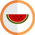 autocollant fruit pastèque vectorisé couleur rond orange stickers