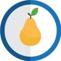 autocollant fruit poire vectorisé couleur rond bleu stickers