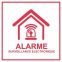 Sticker red Establishment, house, store under video surveillance alarm 7