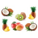 Set de 6 fruits noix coco ananas kiwi mangue exotic logo 4336 sticker cuisine frigo