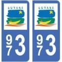973 Guyane ville