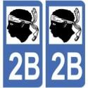 2B South Corsica